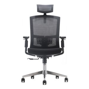 CROWN Mesh Ergonomic Chair