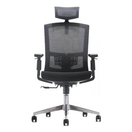 CROWN Mesh Ergonomic Chair