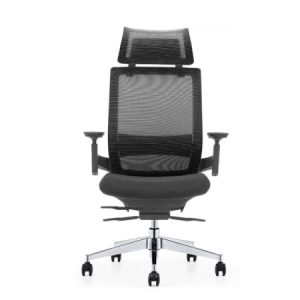 EMBRACE Mesh Ergonomic Chair