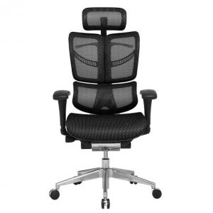 ERGO FLY Ergonomic Chair