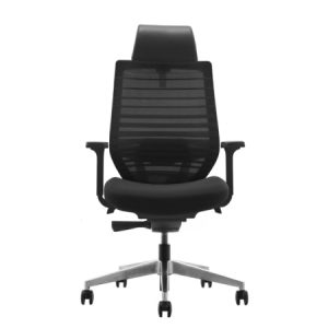FLY Mesh Ergonomic Chair