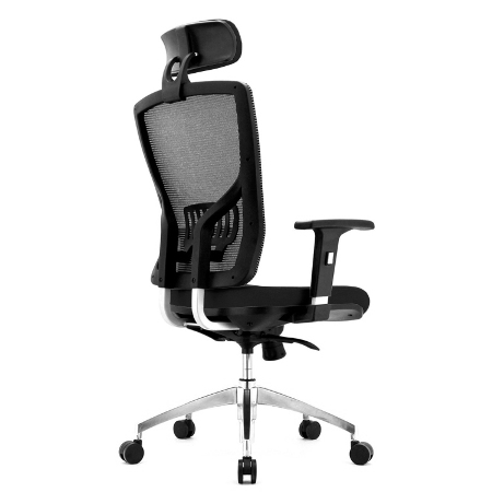 ORACLE Mesh Ergonomic Chair