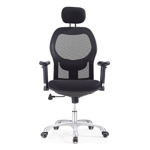 SALLY Mesh Ergonomic Chair