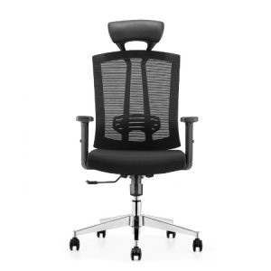 SALSA Mesh Ergonomic Chair
