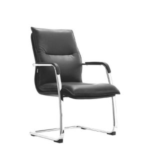 ZAZA Visitor Leather Chair