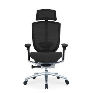 DRIN Mesh Ergonomic Chair