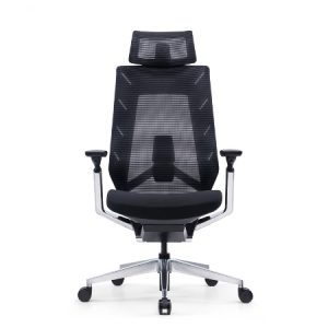 EROL Mesh Ergonomic Chair