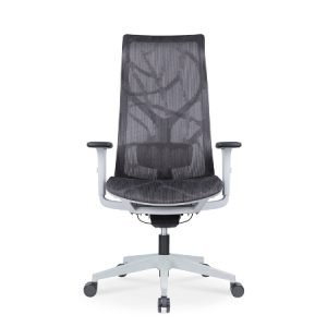EVE Mesh Ergonomic Chair